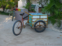 Mexican Bicycle Cart