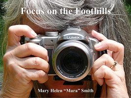 Focus on the Foothills
